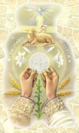 Mois de Juin = Dévotion au Sacré Coeur Eucharistie_ka